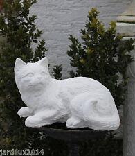 Statue chat curieux en pierre reconstituée, ton pierre blanche