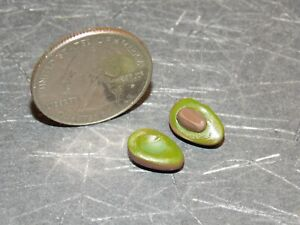 Dollhouse Miniature Avocado Food Fruit 1:12 inch scale G33 Dollys Gallery