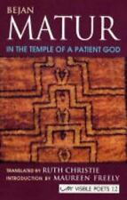 In the Temple of a Patient God by Bejan Matur (2004, Paperback)