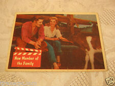 Elvis Presley 1950's Vintage Trading Card New member of the family Bubble Gum