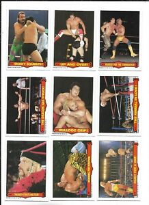 1985 OPC World Wrestling Federation:Lot of 9 different