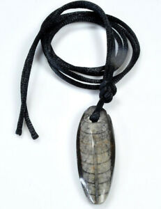 Versteinerter Fossilien Orthozeras Orthoceras Kette Halsband Anhänger mit Band