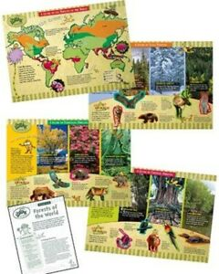 Dr. Seuss The Lorax Saves the Forest Bulletin Board Set