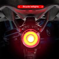 Bicycle MTB Bike Tail Light LED Cycling Safety Rear Lamp USB Smart Brake Warning
