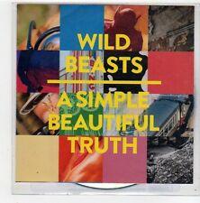 (FN450) Wild Beasts, A Simple Beautiful Truth - 2014 DJ CD