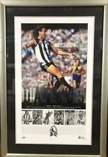 Peter Daicos A Mercurial Magpie Limited Framed and Signed Lithograph