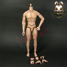 ACI Toys 1/6 Roman Republic Centurion Legio XIII Lucius_ Scar Body set _AT090A