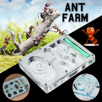 Ants Ant Farm Educational Insect Nest Maze Feeding LIVE Workshop House !   !!A