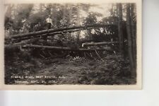 Putnam Real Photo Postcard  Kimball Road 1928 Tornado West Ringe NH 82