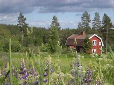 Ferienhaus in Süd Schweden, Alleinlage, Bullerbü Urlaub&Hund&Boot Mariannelund