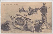 Guerre 14-18 Attelage de chiens belge Mitrailleuse au repos