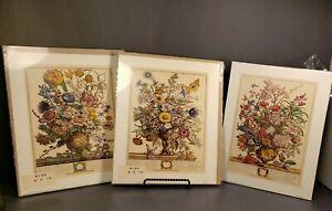 3 VINTAGE VICTORIAN FLORAL STILL LIFE BOTANICAL Lithograph by Robert Furber