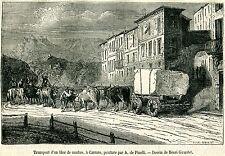 Carrara:Trasporto Blocco di Marmo,Buoi Maremmani.Stampa Antica.Passepartout.1879
