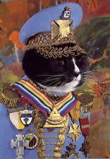 Cat Empire 'El General Gato' Black Cat dressed in Military Uniform Art Postcard