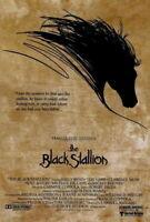 65791 The Black Stallion Movie Kelly Reno Decor Wall Print POSTER