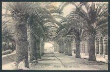 Savona Alassio cartolina ZQ1071