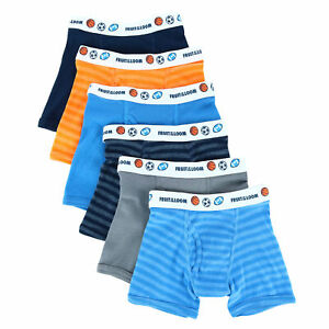 New Fruit of the Loom Toddler Boy's Assorted Boxer Brief with Sport Print