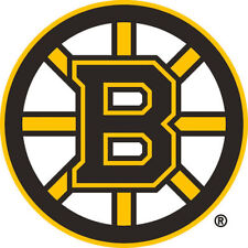Boston Bruins NHL Color Die-Cut Decal Large 12 inch / Car Sticker *Free Shipping