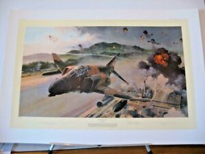 McDonnell Douglas F-4 Phantom Fury Robert Taylor Signed Aviation Art + Bonus