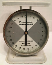 Antique American Family Scale Farmhouse Kitchen 25 lbs vintage scale
