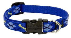 "Lupine Dog Collar 1/2"" DAPPER DOG 6""-9"" New Blue Black Yellow Bones Adjustable"
