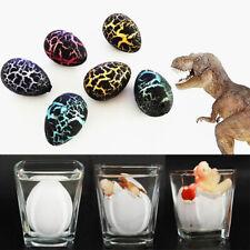 Dinosaur 6Pcs Magic Hatching Growing eggs best educational gift for kids