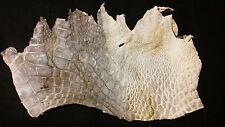 Genuine FL Alligator Skin natural color REAL gator hide alligator hide skin M74