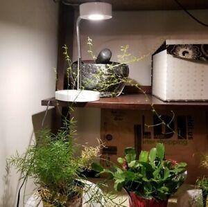 GLOBE LED FOR LIFE DESK LAMPLed desk lamp chrome gooseneck can use for plants