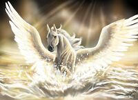 Pegasus White Horse - Fantasy Wings Mystical Creature Wall Art Canvas Pictures