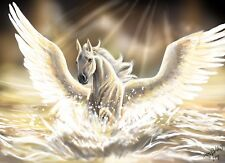 FANTASY WHITE HORSE WINGS HEAVEN WALL ART CANVAS PICTURE PRINT VARIOUS SIZES