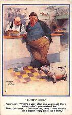 POSTCARD  COMIC   DOG  Related   Stout Dog  Feeding....     LAWSON  WOOD