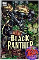 DARK REIGN BLACK PANTHER #1 KEN LASHLEY VARIANT EDITION MARVEL COMICS