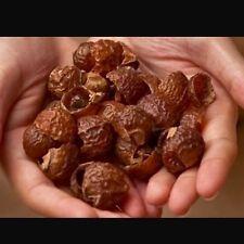 SoapNuts - 4kg Bulk buy Soap Nuts - FREE POST Nature's Alternative