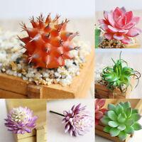 Flores Artificiales Planta Suculenta Verde Cactus FALSO Flor Decoración Hogar ღ