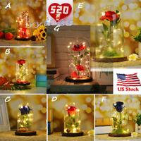 Forever Rose Glass Lamp LED Lighted Golden Flower Valentine's Day Gift For Her