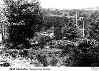 AK, Schellerhau Erzgeb., Botanischer Garten, 1972