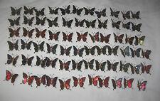 Lot of 68 Multicolored Butterfly Fridge / Screen Magnets Metal & Enamel