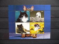 Katzen 14 cats Chats Tiere animals pets Fauna Block KB sheets postfrisch ** MNH