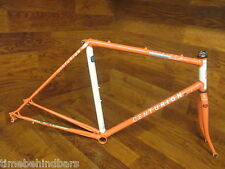 RARE VINTAGE DAVE SCOTT EXPERT IRON MAN LUGGED STEEL ROAD BIKE FRAME SET 48CM