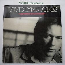 DAVID LYNN JONES - Hard Times On Easy Street - Ex LP Record Mercury 832 518-1