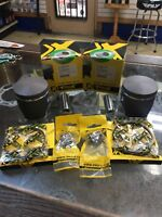1993-2001 Arctic Cat 580 Pantera, ZR, EXT, Piston Kits, Stock 75.40mm Bore