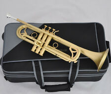 Professional Brushed Matt Brass Trumpet Monel Valves Bb Flat Horn With Case