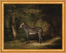 Zebra George Stubbs Tiere Wald Bäume Streifen Pferde Lichtung B A3 02029