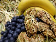 Banana Blueberry & Oaten Hay Krispy Krumble Treats for Pet Bunny Rabbits (12Pce)