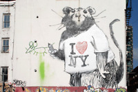 """"""" I Love NY"""" rat by Banksy Canvas Graffiti street art"""