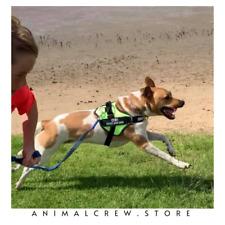 Dog Pet Puppy Harness Halter ID Reflective Vest Leash Strong Adjustable Goat NEW