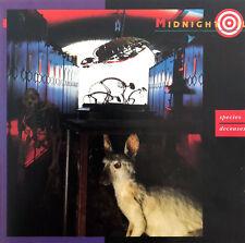 Midnight Oil Maxi CD Species Deceases - Europe (EX+/EX)