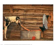 color COWBOY ART PRINT Pistol Bit and Rifle by Barry Hart Gun Hat Poster 13x19