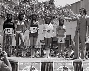 Vintage 1972 8x10 Photo * Most Beautiful Ape Beauty Bikini Contest * Planet Apes