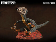 Rebor 1:35 scale Baby Utahraptor dinosaur model (Breeze - Scout Series) BNWT